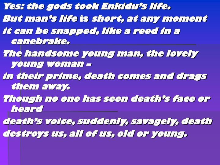 Yes: the gods took Enkidu's life.