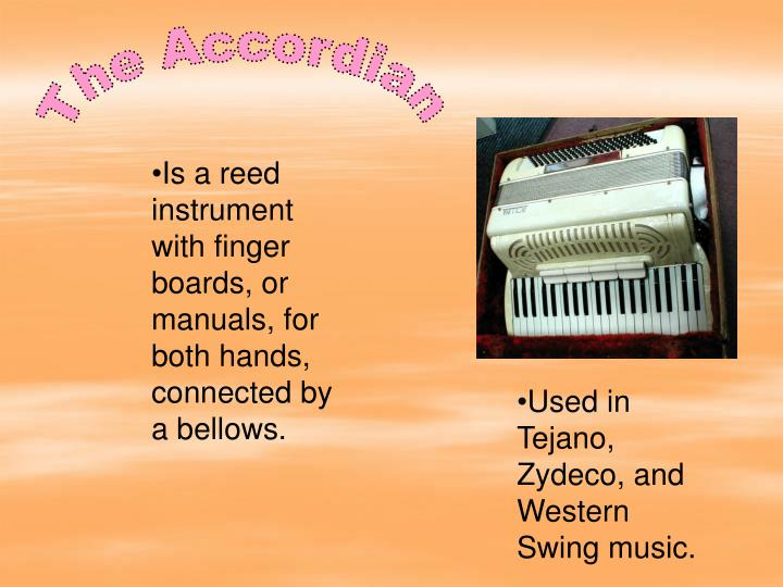 The Accordian