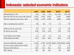 indonesia selected economic indicators