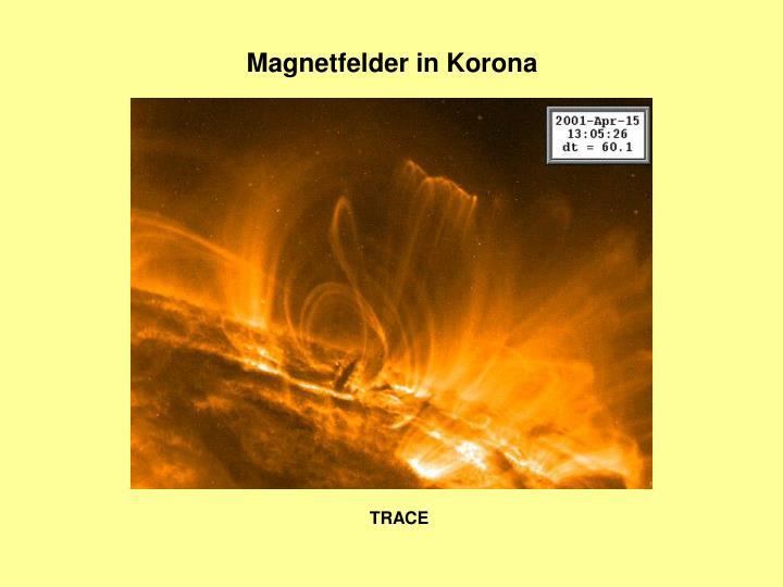 Magnetfelder in Korona