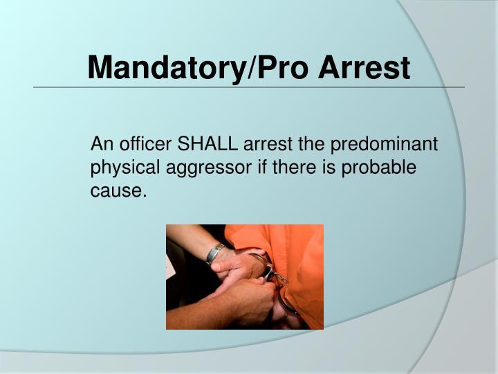 Mandatory/Pro Arrest