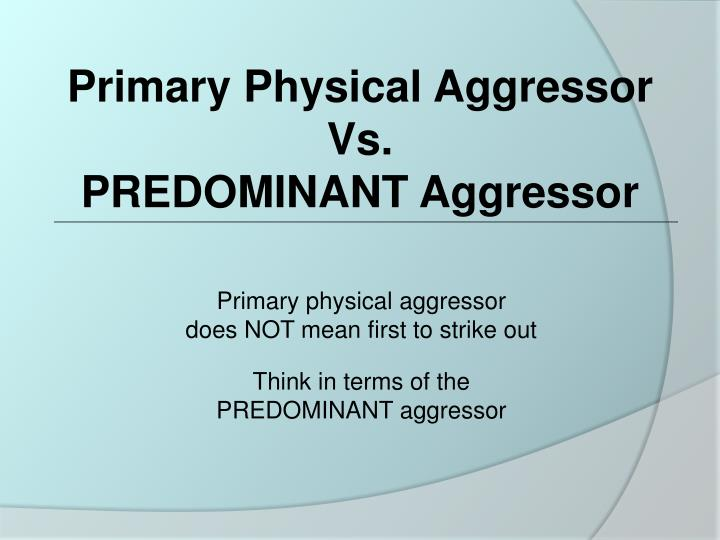 Primary Physical Aggressor