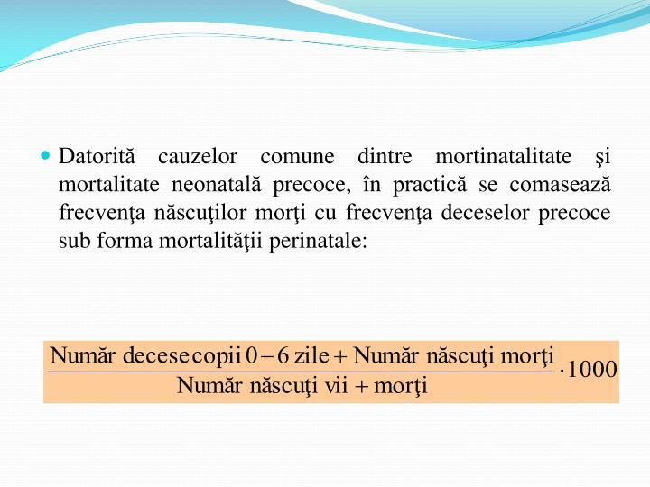 Datorită cauzelor comune dintre mortinatalitate şi mortalitate neonatală precoce, în practică se comasează frecvenţa născuţilor morţi cu frecvenţa deceselor precoce sub forma mortalităţii perinatale: