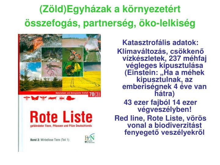 (Zöld)Egyházak a környezetért