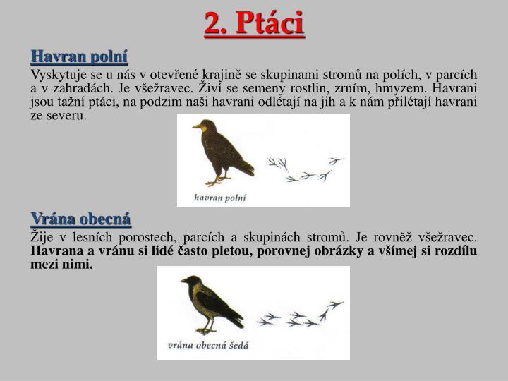 2. Ptáci