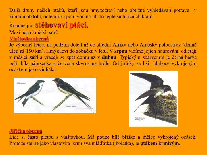 Další druhy našich ptáků, kteří jsou hmyzožraví nebo obtížně vyhledávají potravu  v zimním období, odlétají za potravou na jih do teplejších jižních krajů.