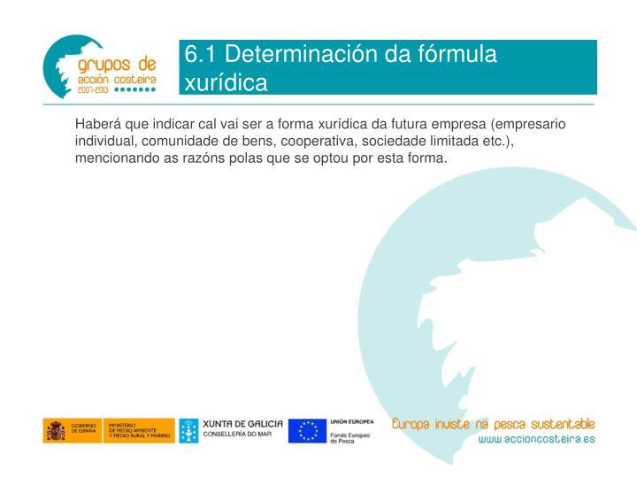 6.1 Determinación da fórmula xurídica