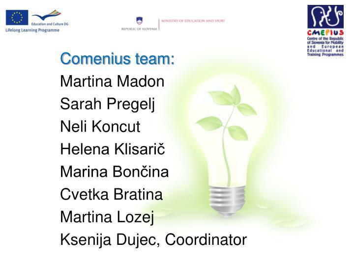 Comenius team: