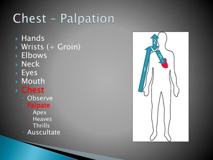 Chest – Palpation