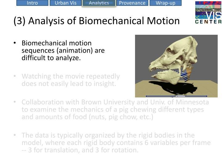 (3) Analysis of Biomechanical Motion
