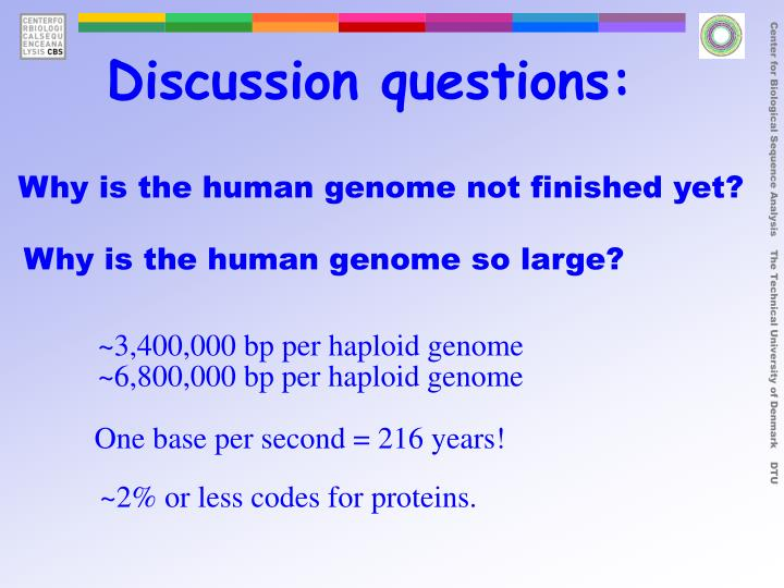 ~3,400,000 bp per haploid genome