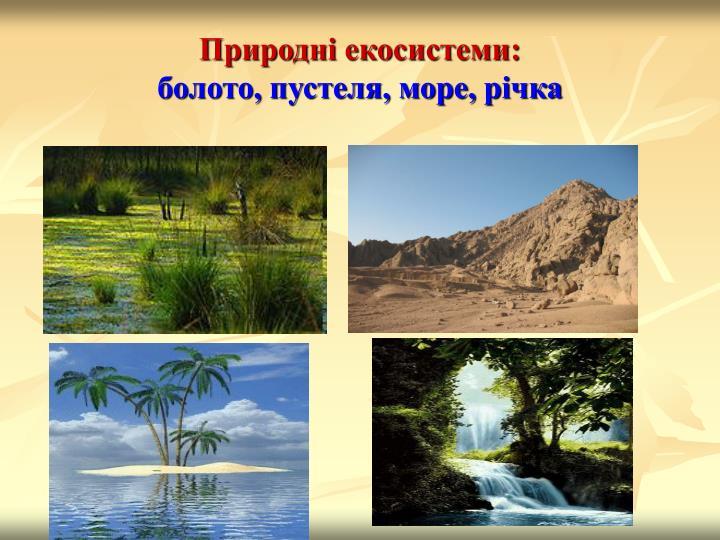 Природні екосистеми: