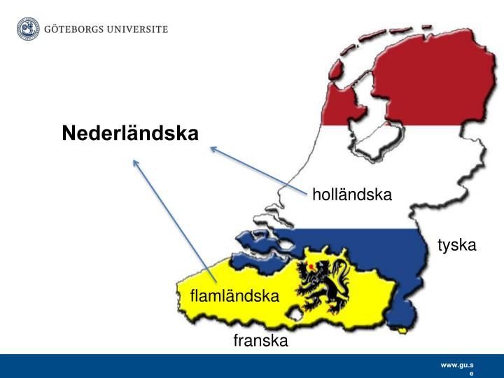 Nederländska