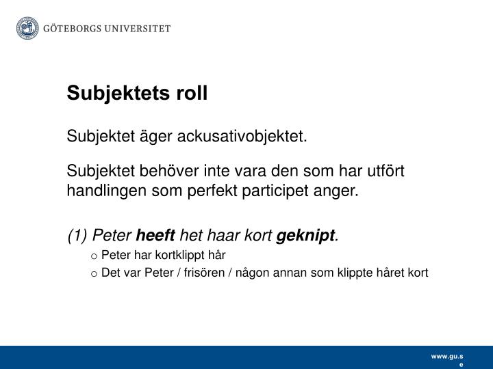 Subjektets roll