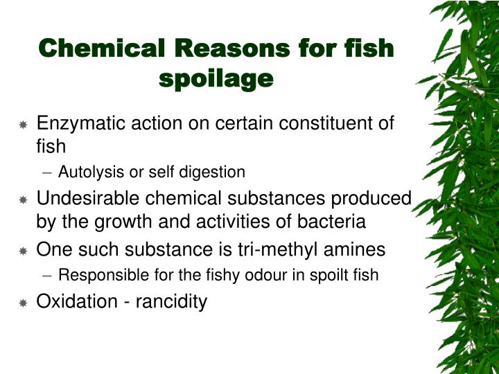 Chemical Reasons for fish spoilage