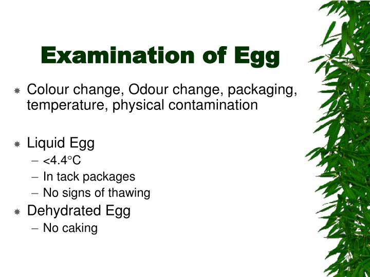Examination of Egg