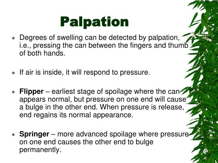 Palpation