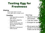 testing egg for freshness1