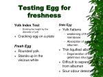 testing egg for freshness2