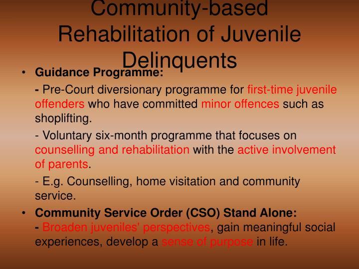 Guidance Programme: