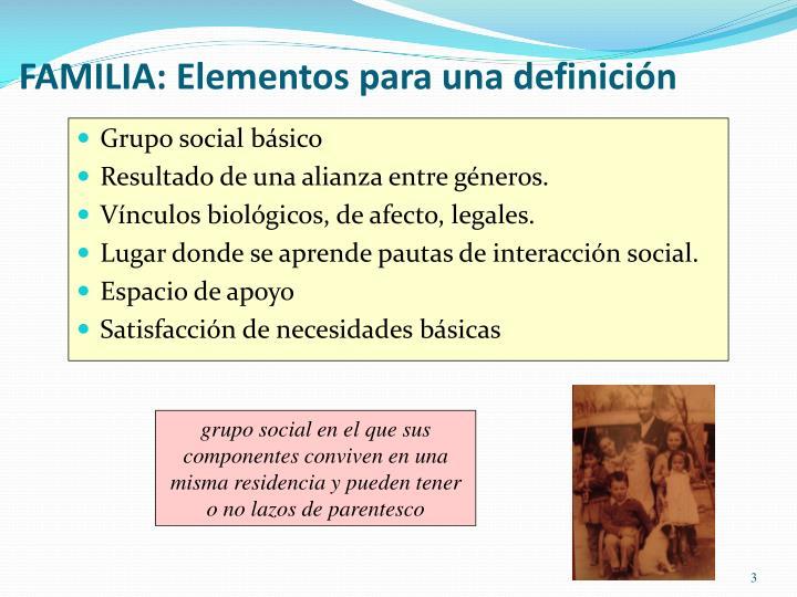 FAMILIA: Elementos para una definición