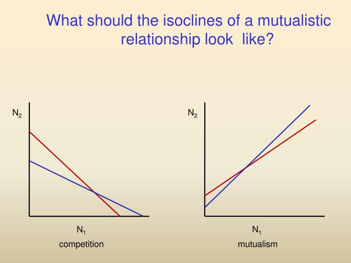 What should the isoclines of a mutualistic relationship look  like?