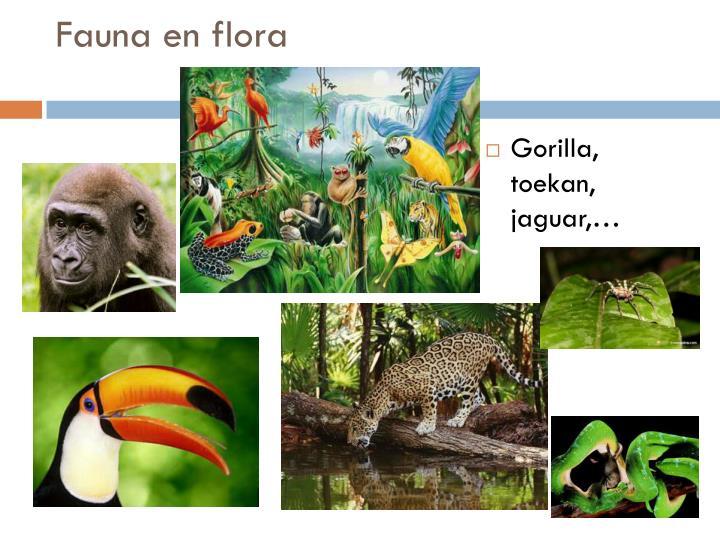 Fauna en flora