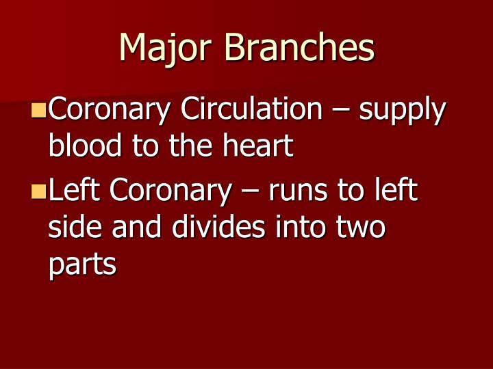 Major Branches