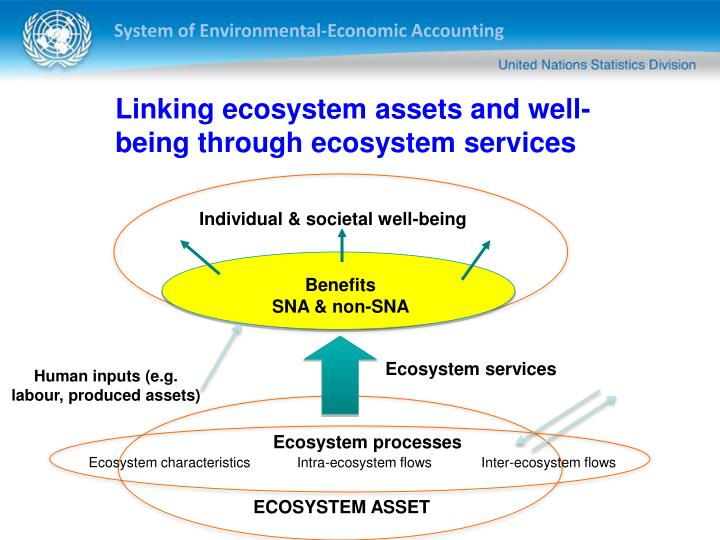 Linking ecosystem assets and well-being through ecosystem services