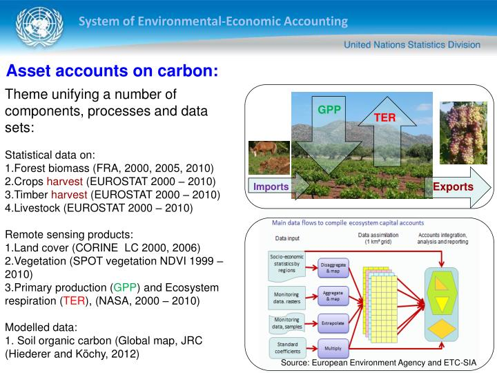 Asset accounts on carbon: