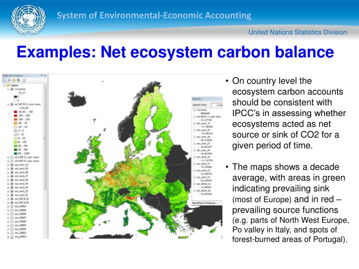 Examples: Net ecosystem carbon balance
