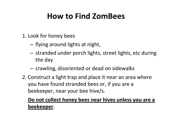 How to find zombees