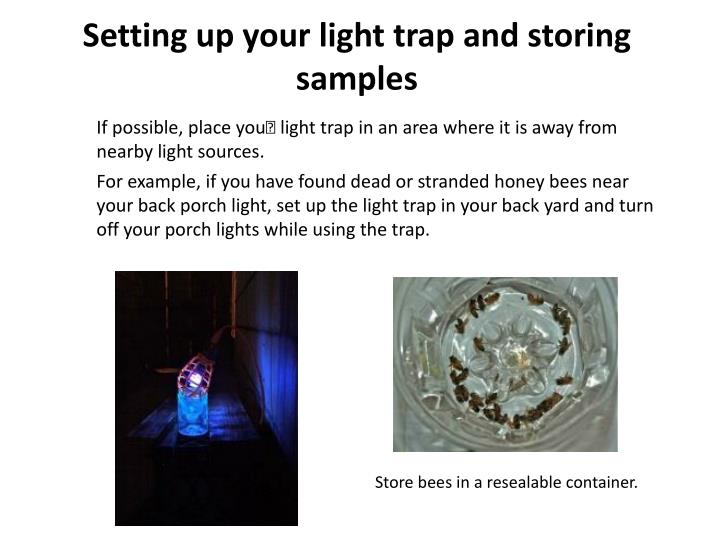 Setting up your light trap and storing samples