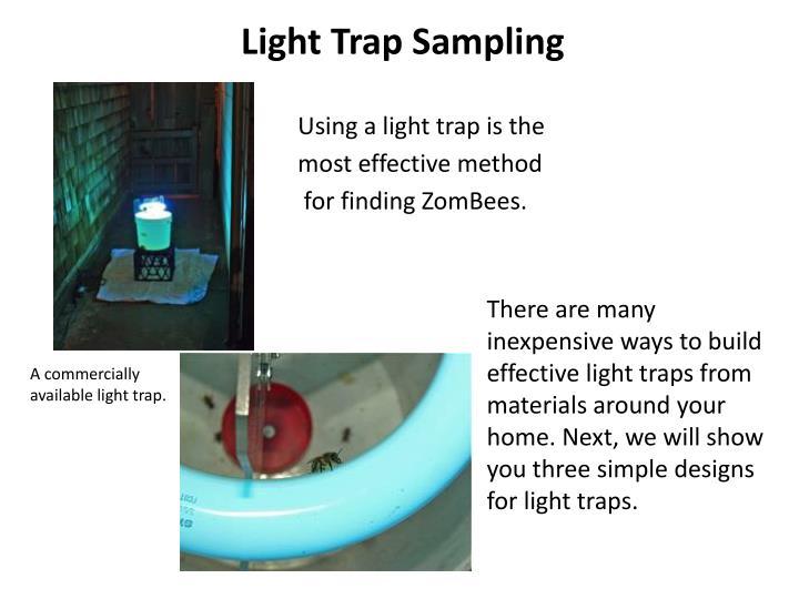 Light Trap Sampling