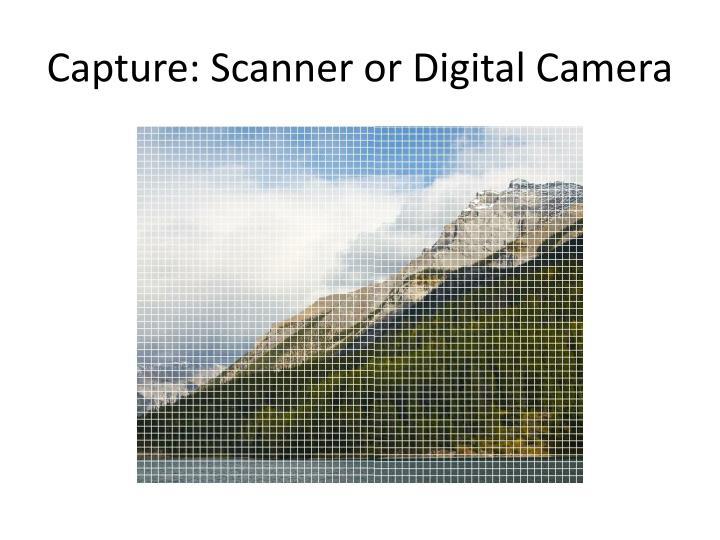 Capture: Scanner or Digital Camera
