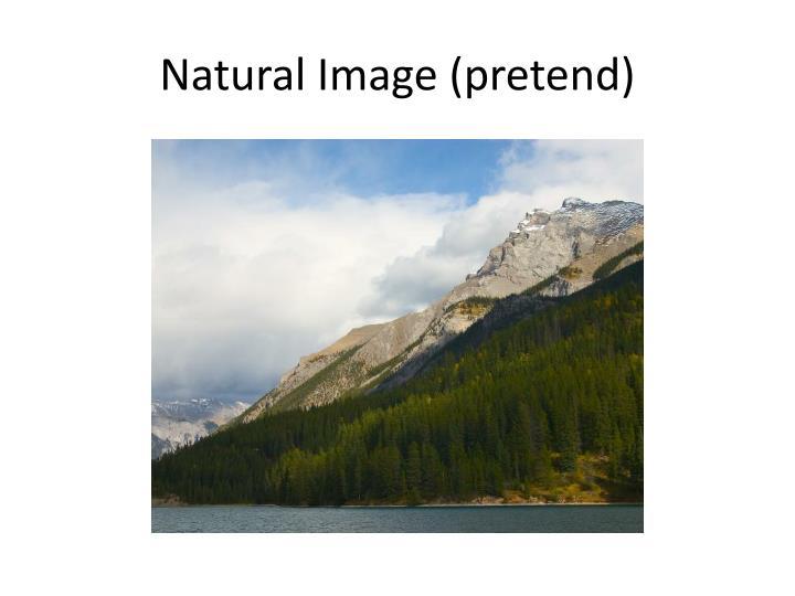 Natural Image (pretend)
