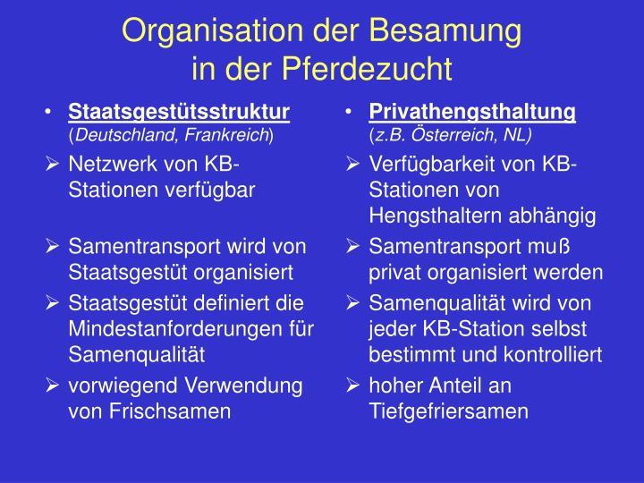 Organisation der Besamung