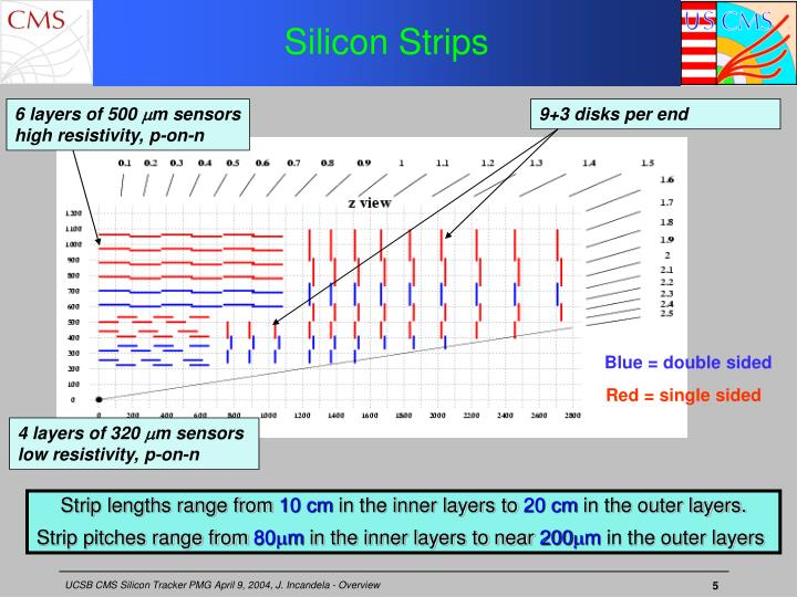 Silicon Strips