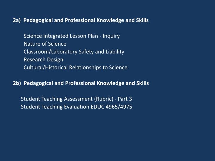 2a)  Pedagogical and Professional Knowledge and Skills