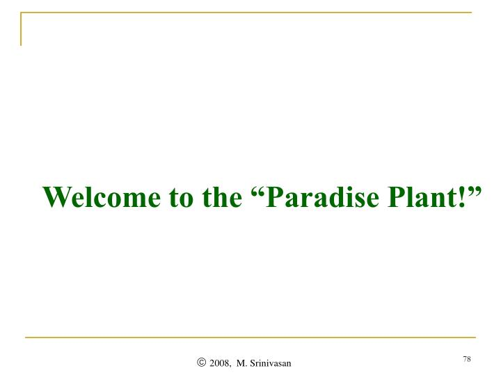 "Welcome to the ""Paradise Plant!"""