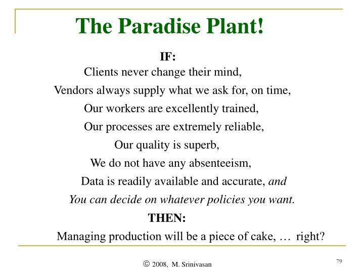 The Paradise Plant!