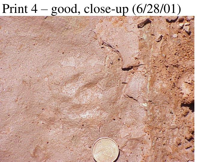 Print 4 – good, close-up (6/28/01)