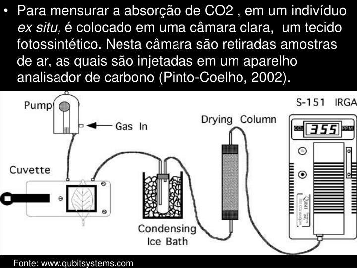 Para mensurar a absorção de CO2 , em um indivíduo