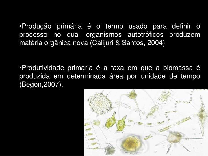 Produção primária é o termo usado para definir o processo no qual organismos autotróficos produzem matéria orgânica nova (Calijuri & Santos, 2004)