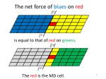 t he net force of blues on red1