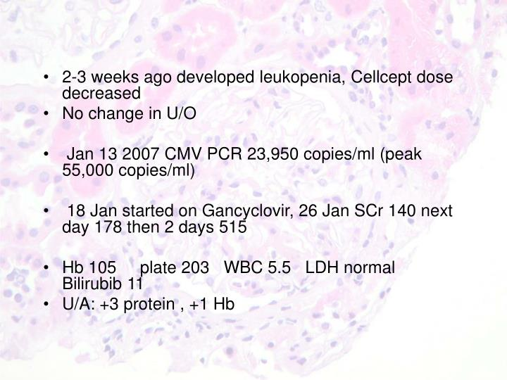 2-3 weeks ago developed leukopenia, Cellcept dose decreased