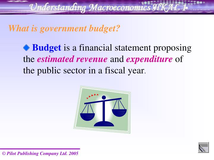 What is government budget?