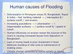 human causes of flooding