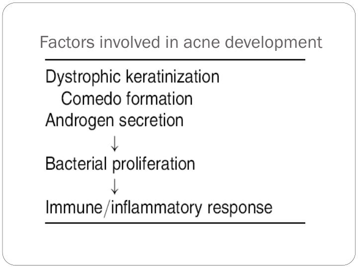Factors involved in acne development