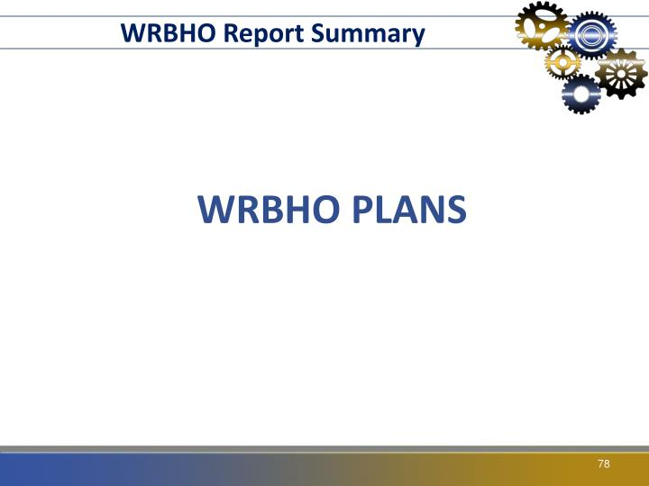 WRBHO Report Summary